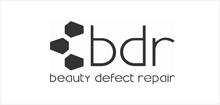 bdr-logo-grey